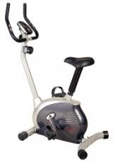 Sunny Upright Exercise Bike