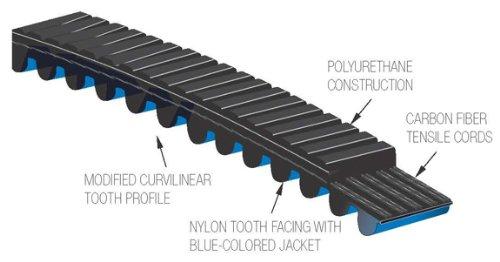 Schwinn Carbon Blue Belt Drive