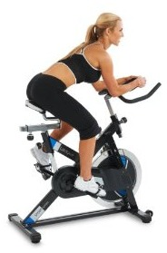 Lifespan S2 Indoor Cycling Bike