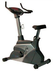Fitnex B50 Upright Exercise Bike